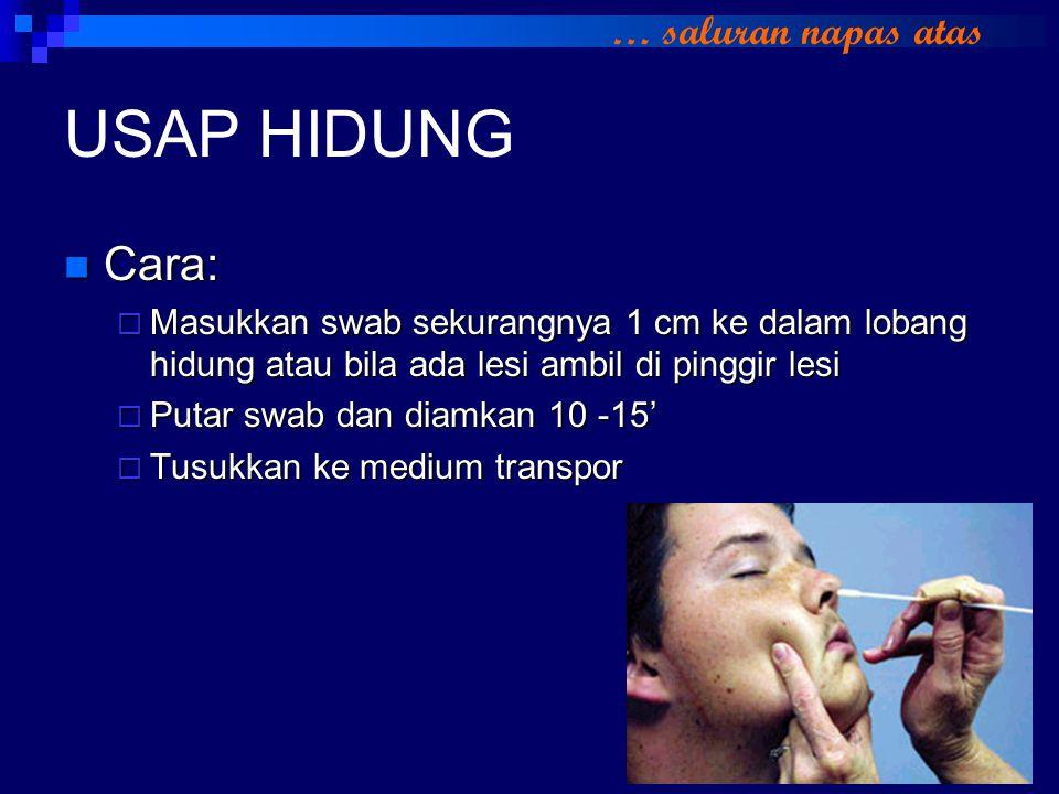 USAP HIDUNG Cara: Cara:  Masukkan swab sekurangnya 1 cm ke dalam lobang hidung atau bila ada lesi ambil di pinggir lesi  Putar swab dan diamkan 10 -