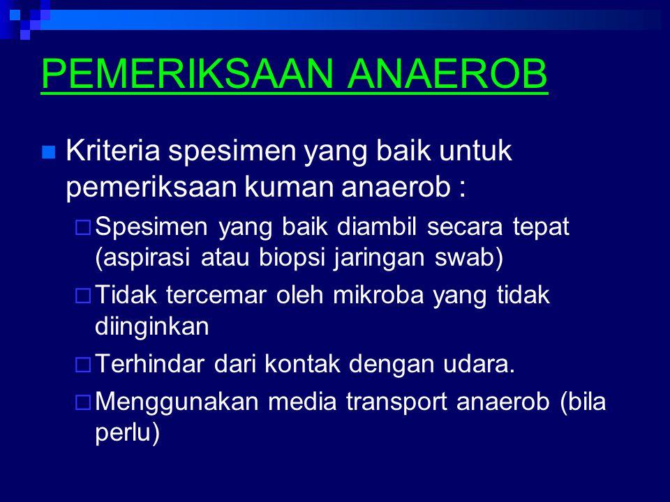 PEMERIKSAAN ANAEROB Kriteria spesimen yang baik untuk pemeriksaan kuman anaerob :  Spesimen yang baik diambil secara tepat (aspirasi atau biopsi jari