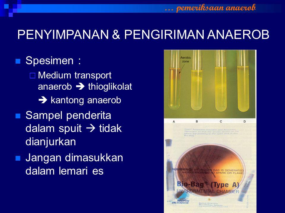 PENYIMPANAN & PENGIRIMAN ANAEROB Spesimen :  Medium transport anaerob  thioglikolat  kantong anaerob Sampel penderita dalam spuit  tidak dianjurka