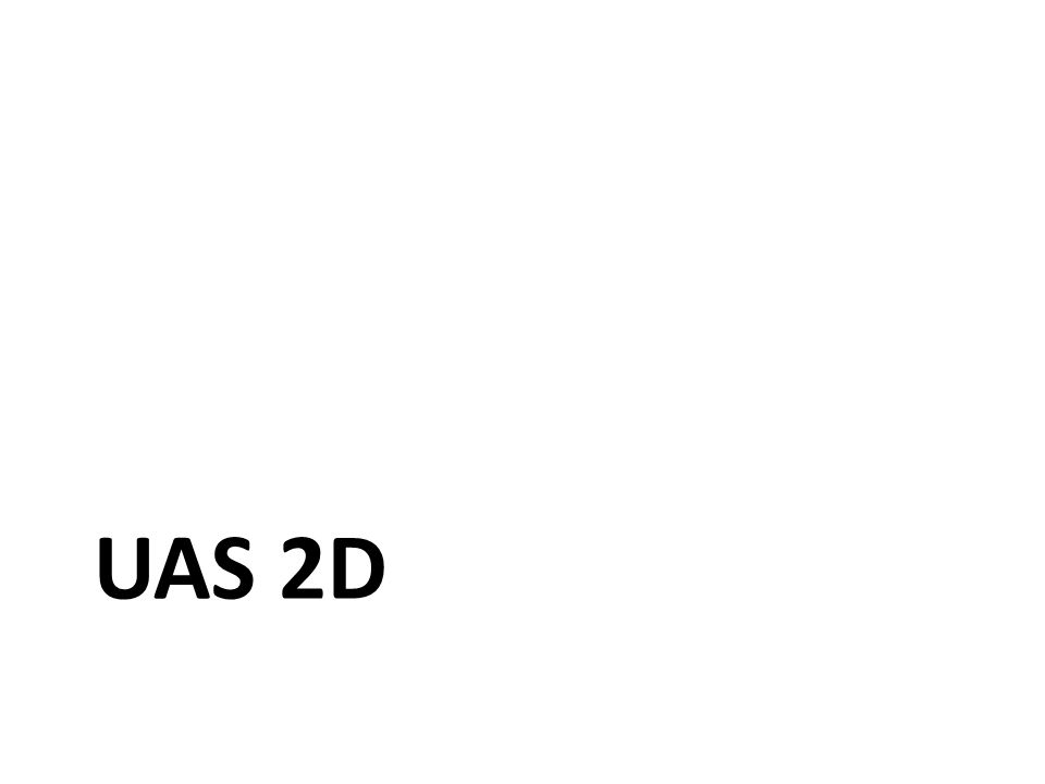 UAS 2D