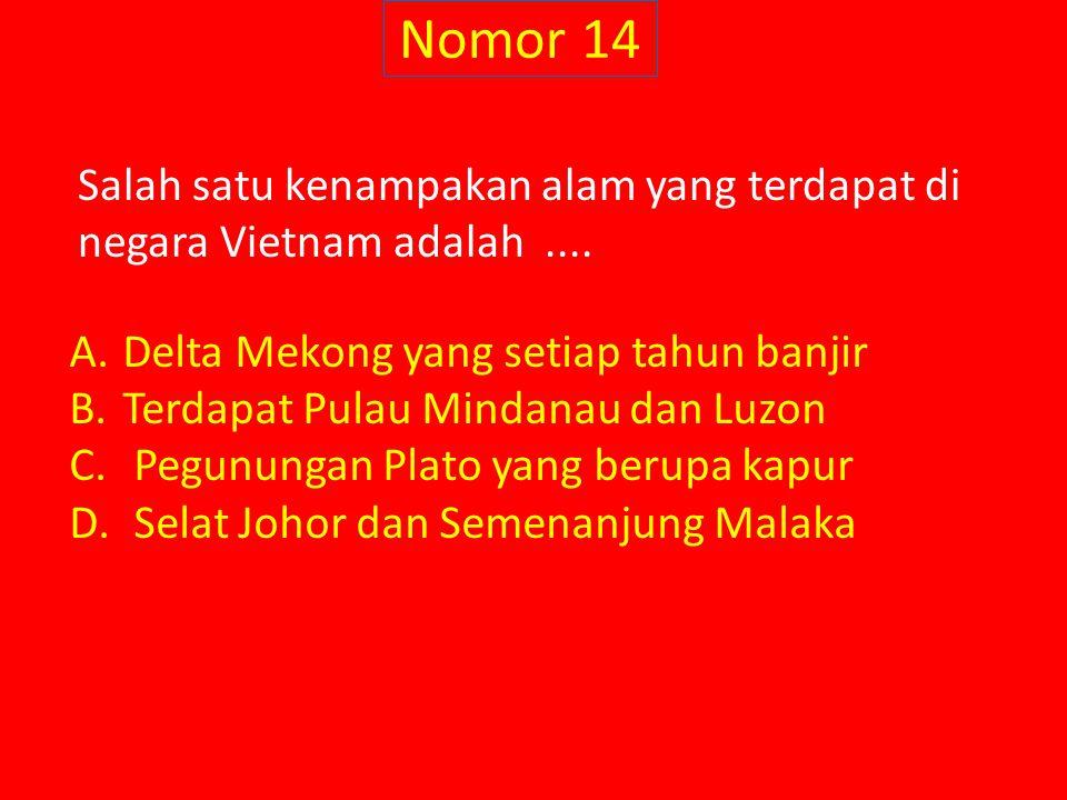 Nomor 14 Salah satu kenampakan alam yang terdapat di negara Vietnam adalah....