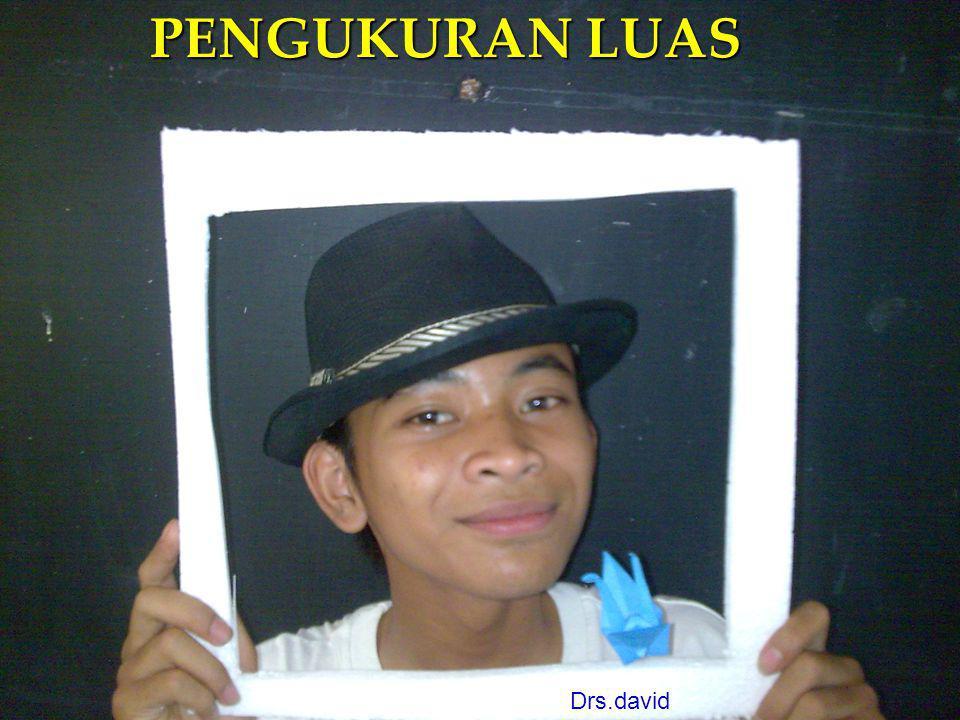 PENGUKURAN LUAS Drs.david