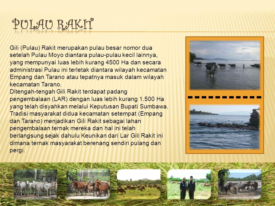 Gili (Pulau) Rakit merupakan pulau besar nomor dua setelah Pulau Moyo diantara pulau-pulau kecil lainnya, yang mempunyai luas lebih kurang 4500 Ha dan secara administrasi Pulau ini terletak diantara wilayah kecamatan Empang dan Tarano atau tepatnya masuk dalam wilayah kecamatan Tarano.