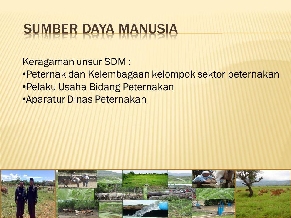 Keragaman unsur SDM : Peternak dan Kelembagaan kelompok sektor peternakan Pelaku Usaha Bidang Peternakan Aparatur Dinas Peternakan