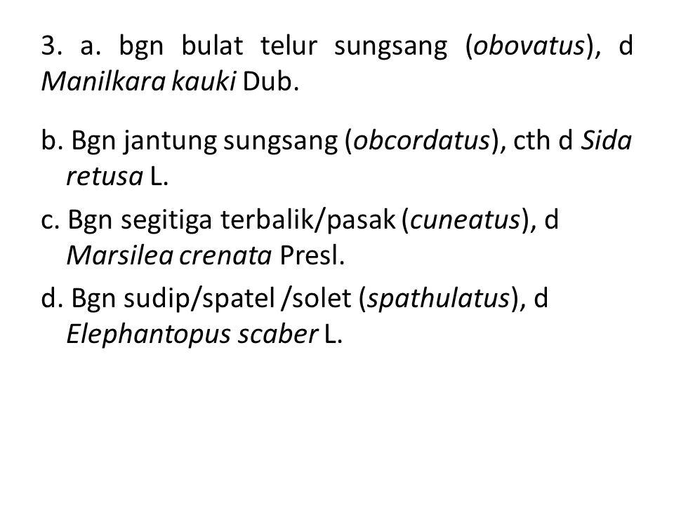 3. a. bgn bulat telur sungsang (obovatus), d Manilkara kauki Dub. b. Bgn jantung sungsang (obcordatus), cth d Sida retusa L. c. Bgn segitiga terbalik/