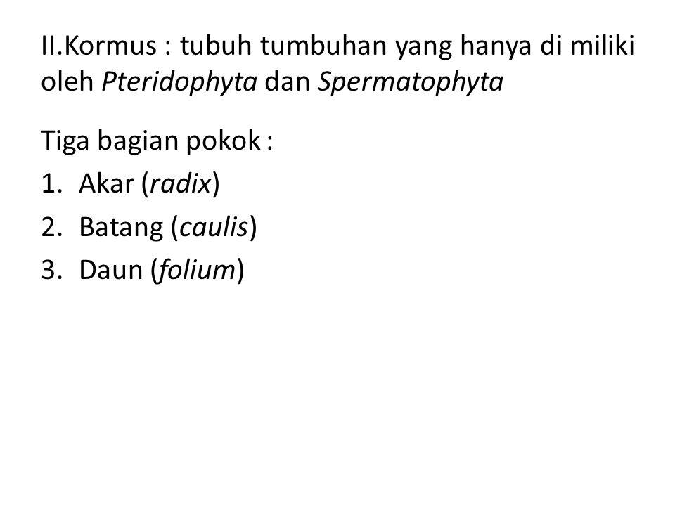 II.Kormus : tubuh tumbuhan yang hanya di miliki oleh Pteridophyta dan Spermatophyta Tiga bagian pokok : 1.Akar (radix) 2.Batang (caulis) 3.Daun (foliu
