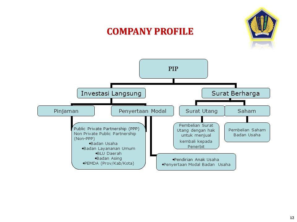 COMPANY PROFILE 12 PIP Investasi Langsung PinjamanPenyertaan Modal Public Private Partnership (PPP) Non Private Public Partnership (Non-PPP) Badan Usa