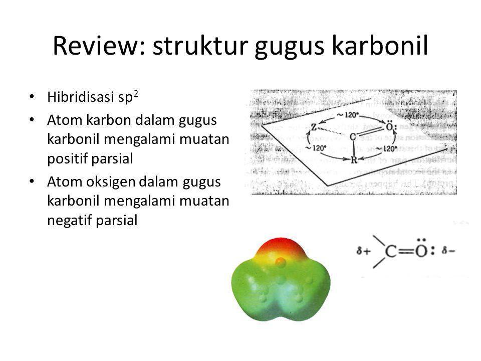 Review: struktur gugus karbonil Hibridisasi sp 2 Atom karbon dalam gugus karbonil mengalami muatan positif parsial Atom oksigen dalam gugus karbonil m