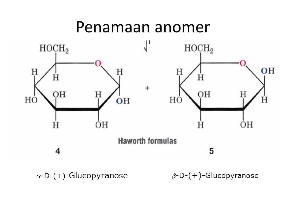 Penamaan anomer -D-(+)- Glucopyranose -D- (+)- Glucopyranose