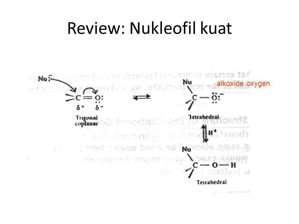 Karakter glycoside Merupakan acetal yang umumnya stabil (tidak mudah bereaksi/berubah) dalam suasana basa Sering dimanfaatkan untuk mekanisme 'group protection' pada karbohidrat