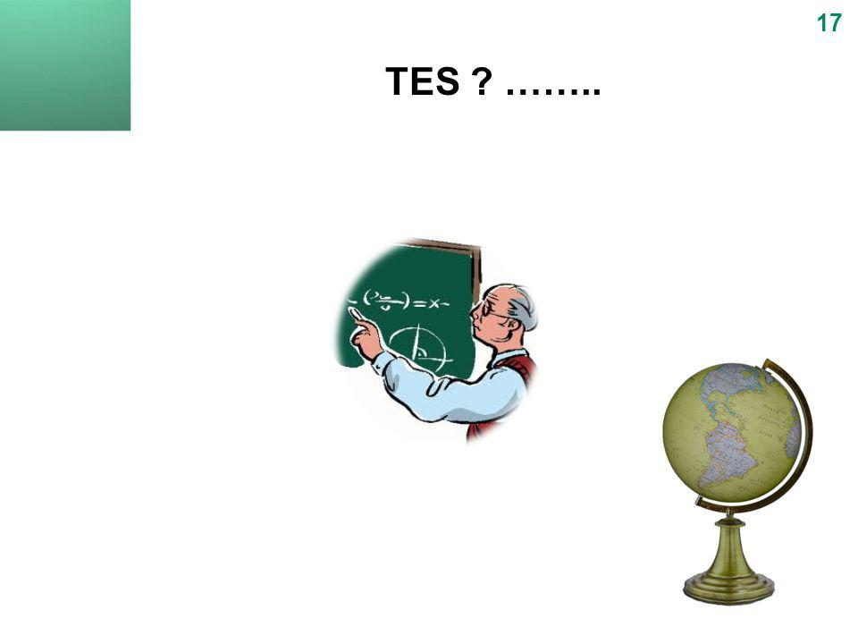 TES ? …….. 17