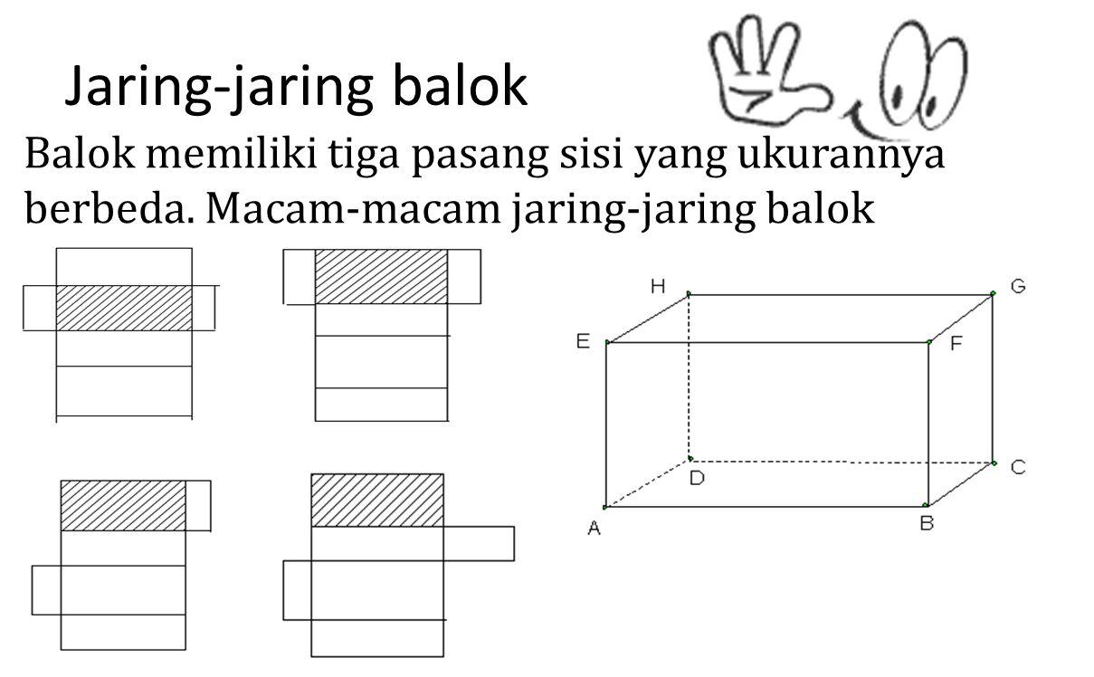 Jaring-jaring balok Balok memiliki tiga pasang sisi yang ukurannya berbeda. Macam-macam jaring-jaring balok