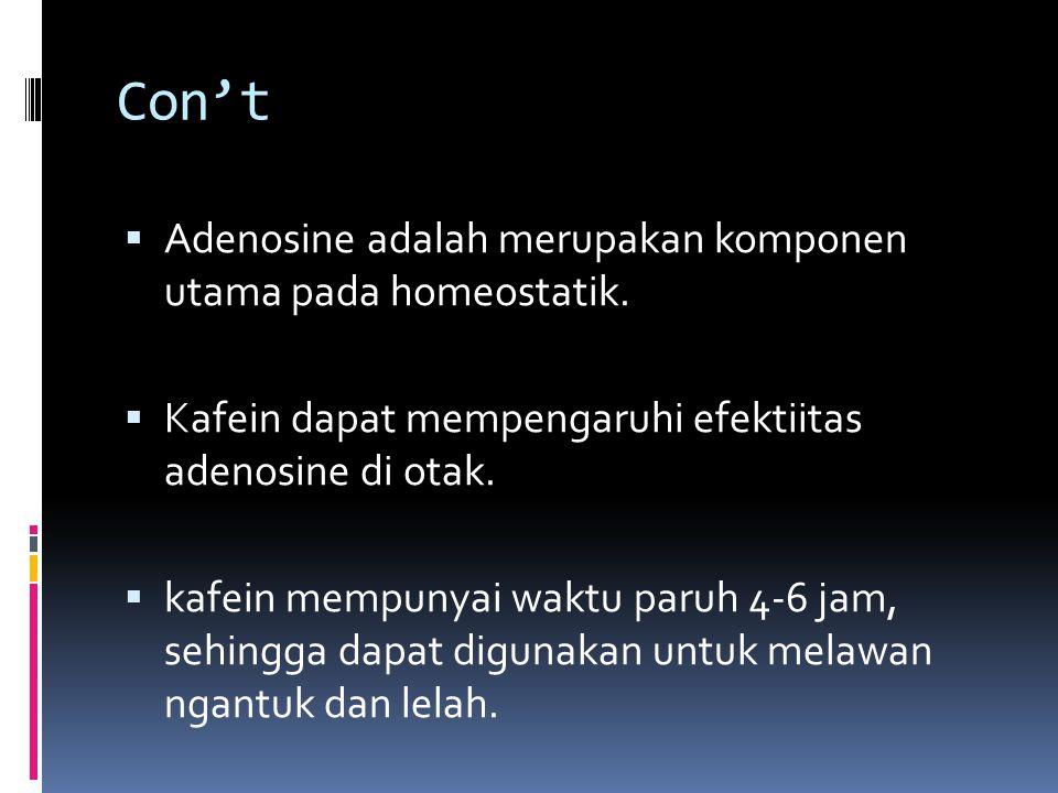 Con't  Adenosine adalah merupakan komponen utama pada homeostatik.