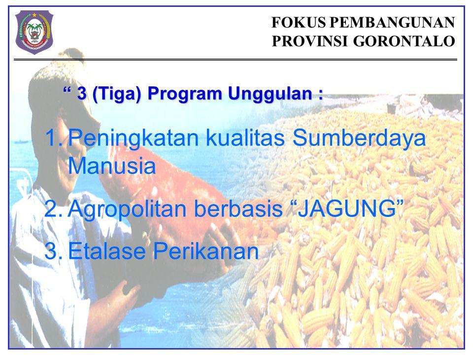 FOKUS PEMBANGUNAN PROVINSI GORONTALO 3 (Tiga) Program Unggulan : 1.Peningkatan kualitas Sumberdaya Manusia 2.Agropolitan berbasis JAGUNG 3.Etalase Perikanan