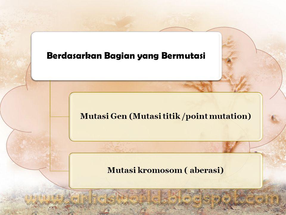 Berdasarkan Bagian yang Bermutasi Mutasi Gen (Mutasi titik /point mutation) Mutasi kromosom ( aberasi)