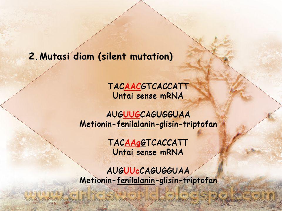 2.Mutasi diam (silent mutation) TACAACGTCACCATT Untai sense mRNA AUGUUGCAGUGGUAA Metionin-fenilalanin-glisin-triptofan TACAAgGTCACCATT Untai sense mRNA AUGUUcCAGUGGUAA Metionin-fenilalanin-glisin-triptofan