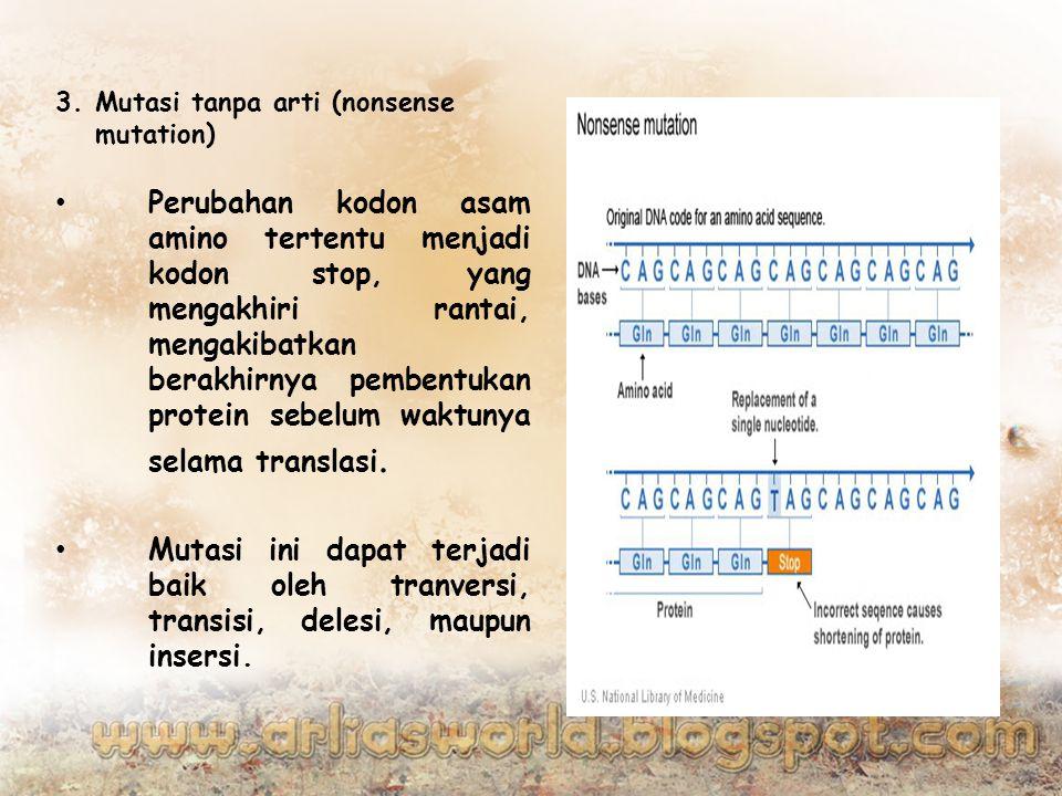 3.Mutasi tanpa arti (nonsense mutation) Perubahan kodon asam amino tertentu menjadi kodon stop, yang mengakhiri rantai, mengakibatkan berakhirnya pembentukan protein sebelum waktunya selama translasi.