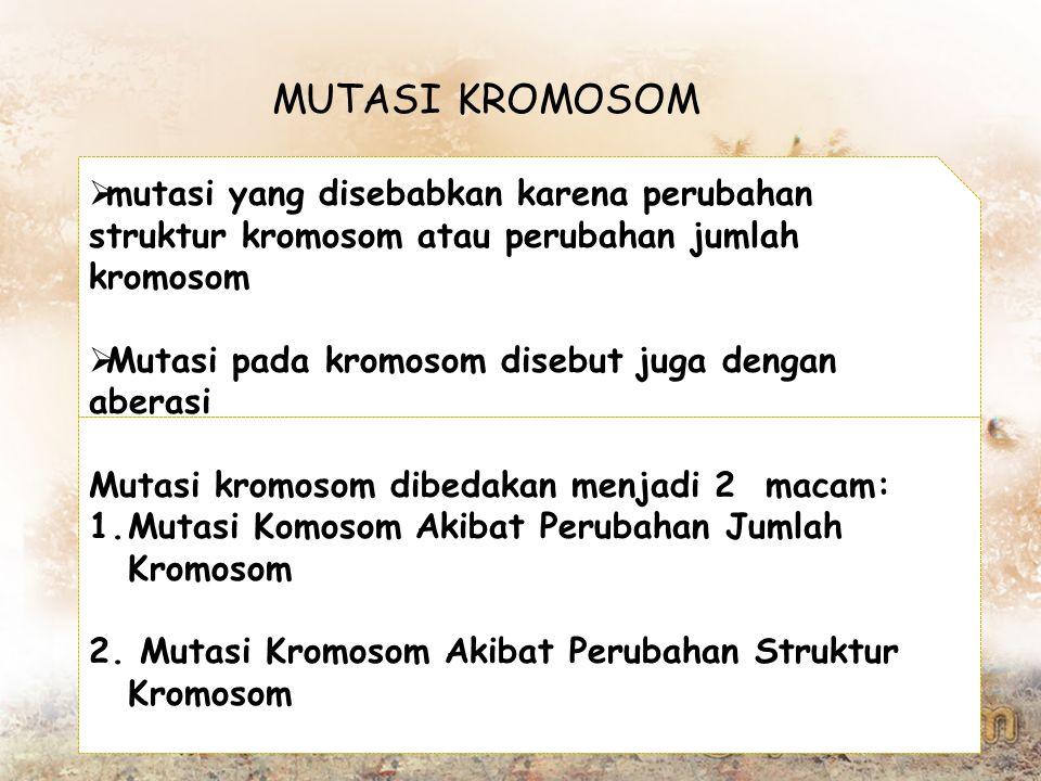 MUTASI KROMOSOM  mutasi yang disebabkan karena perubahan struktur kromosom atau perubahan jumlah kromosom  Mutasi pada kromosom disebut juga dengan aberasi Mutasi kromosom dibedakan menjadi 2 macam: 1.Mutasi Komosom Akibat Perubahan Jumlah Kromosom 2.