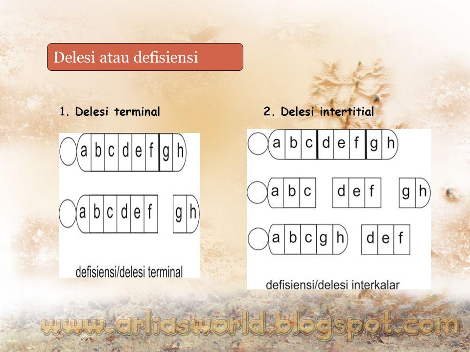 Delesi atau defisiensi 1. Delesi terminal2. Delesi intertitial