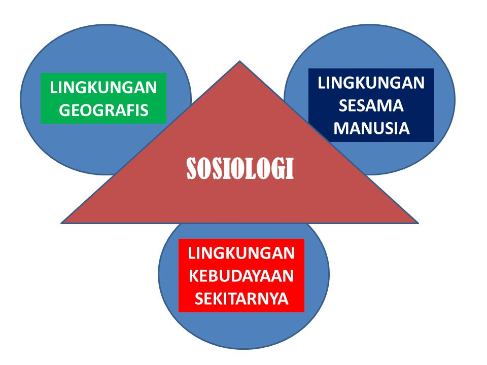 LINGKUNGAN GEOGRAFIS LINGKUNGAN SESAMA MANUSIA LINGKUNGAN KEBUDAYAAN SEKITARNYA SOSIOLOGI