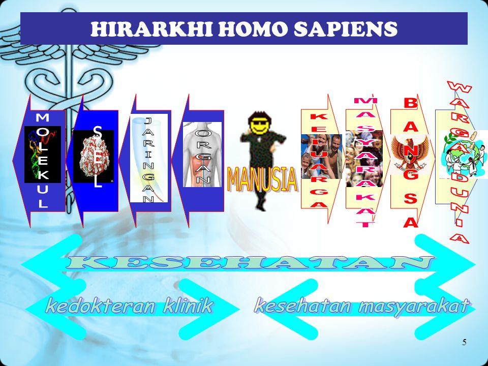 5 HIRARKHI HOMO SAPIENS