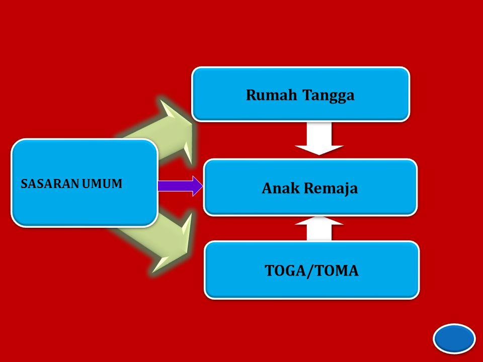 SASARAN UMUM Rumah Tangga TOGA/TOMA Anak Remaja