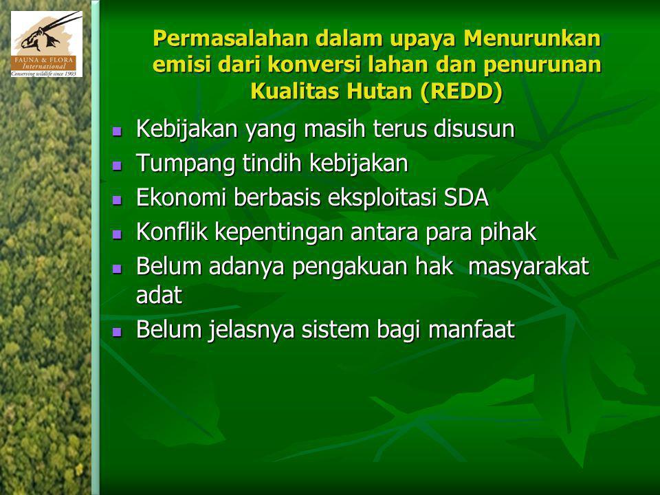 Permasalahan dalam upaya Menurunkan emisi dari konversi lahan dan penurunan Kualitas Hutan (REDD) Kebijakan yang masih terus disusun Kebijakan yang ma