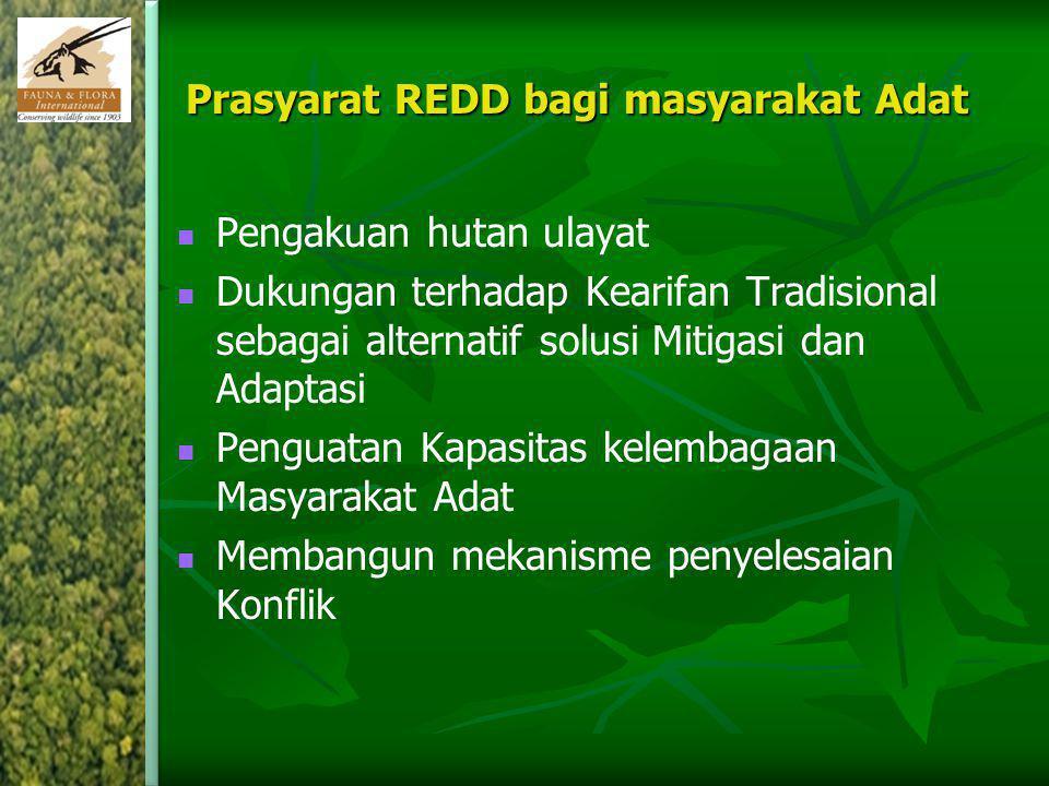 Prasyarat REDD bagi masyarakat Adat Pengakuan hutan ulayat Dukungan terhadap Kearifan Tradisional sebagai alternatif solusi Mitigasi dan Adaptasi Peng