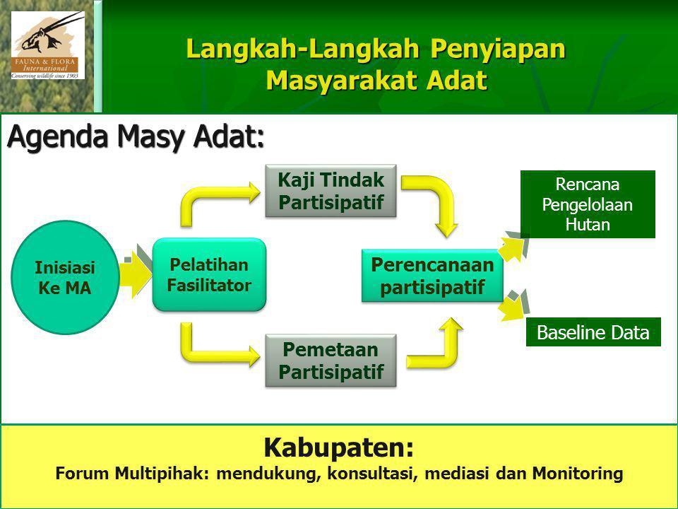 Agenda Masy Adat: Langkah-Langkah Penyiapan Masyarakat Adat Kaji Tindak Partisipatif Rencana Pengelolaan Hutan Perencanaan partisipatif Pemetaan Parti