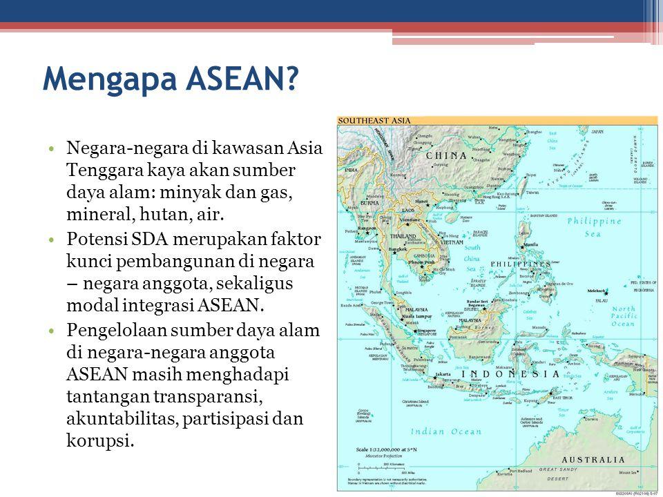 Mengapa ASEAN? Negara-negara di kawasan Asia Tenggara kaya akan sumber daya alam: minyak dan gas, mineral, hutan, air. Potensi SDA merupakan faktor ku