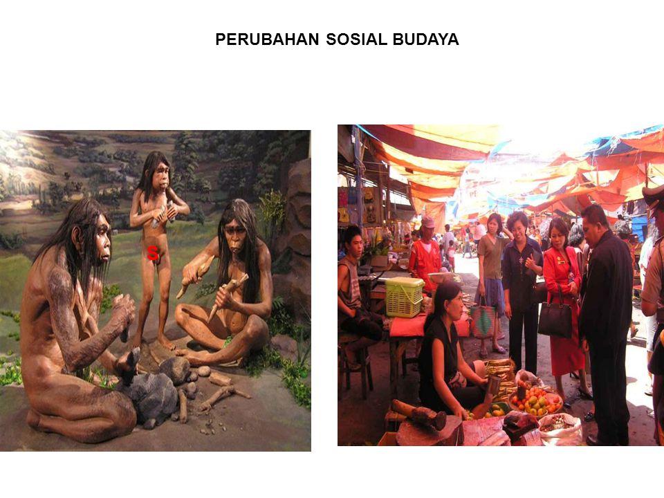 PERUBAHAN SOSIAL BUDAYA S