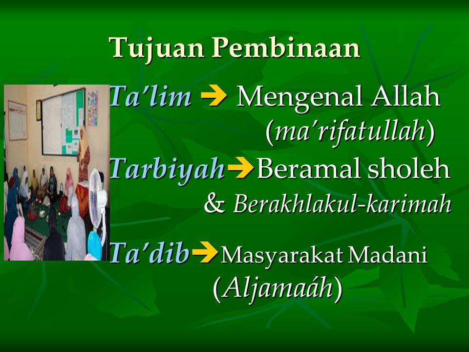 Ta'limTadibTarbiyah