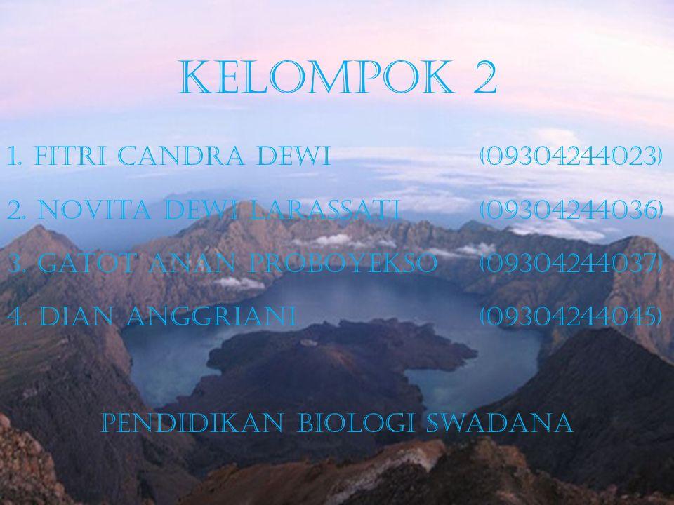 Kelompok 2 1.Fitri Candra Dewi (09304244023) 2. Novita Dewi Larassati (09304244036) 3.
