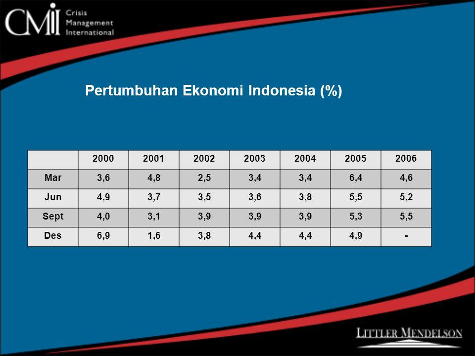 Pertumbuhan Ekonomi Indonesia (%) 2000200120022003200420052006 Mar3,64,82,53,4 6,44,6 Jun4,93,73,53,63,85,55,2 Sept4,03,13,9 5,35,5 Des6,91,63,84,4 4,