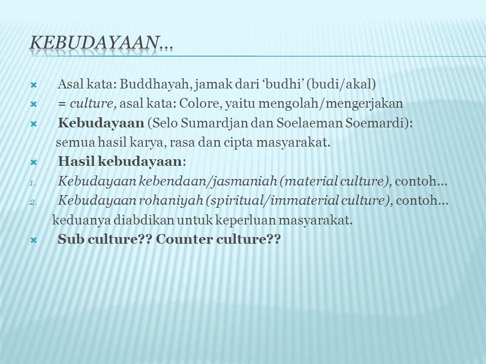  Asal kata: Buddhayah, jamak dari 'budhi' (budi/akal)  = culture, asal kata: Colore, yaitu mengolah/mengerjakan  Kebudayaan (Selo Sumardjan dan Soelaeman Soemardi): semua hasil karya, rasa dan cipta masyarakat.