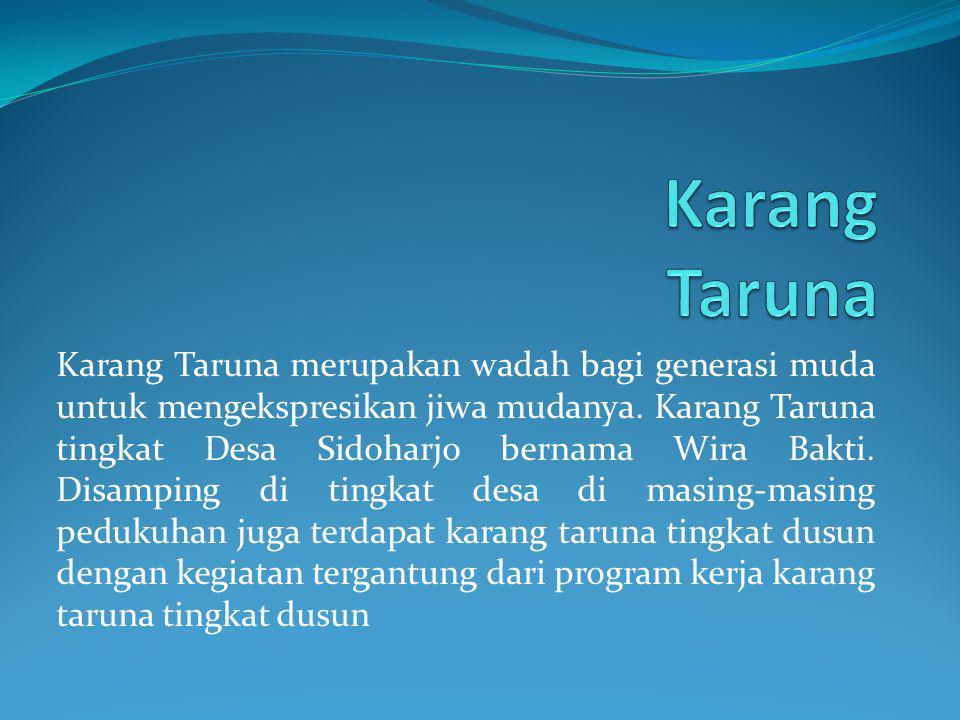 Karang Taruna merupakan wadah bagi generasi muda untuk mengekspresikan jiwa mudanya. Karang Taruna tingkat Desa Sidoharjo bernama Wira Bakti. Disampin