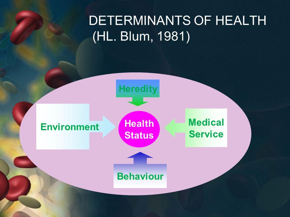 Analisis situasi kesehatan Analisa status kesehatan Analisa aspek kependudukan Analisa pelayanan/upaya kesehatan Analisa perilaku kesehatan Analisa lingkungan
