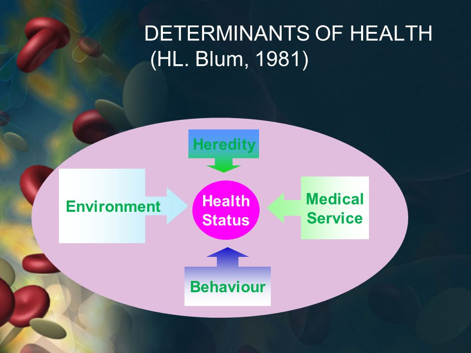 DETERMINANTS OF HEALTH (HL. Blum, 1981) Health Status Heredity Environment Medical Service Behaviour