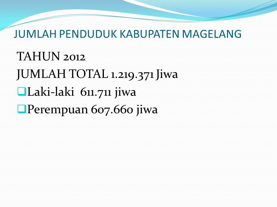 JUMLAH PENDUDUK KABUPATEN MAGELANG TAHUN 2012 JUMLAH TOTAL 1.219.371 Jiwa  Laki-laki 611.711 jiwa  Perempuan 607.660 jiwa
