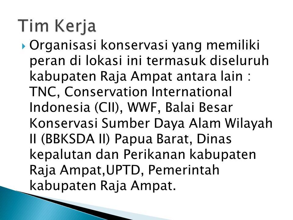  Organisasi konservasi yang memiliki peran di lokasi ini termasuk diseluruh kabupaten Raja Ampat antara lain : TNC, Conservation International Indonesia (CII), WWF, Balai Besar Konservasi Sumber Daya Alam Wilayah II (BBKSDA II) Papua Barat, Dinas kepalutan dan Perikanan kabupaten Raja Ampat,UPTD, Pemerintah kabupaten Raja Ampat.
