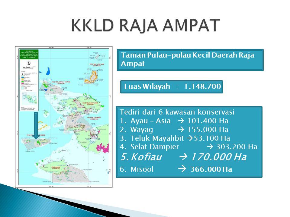 Taman Pulau-pulau Kecil Daerah Raja Ampat Luas Wilayah : 1.148.700 Ha Tediri dari 6 kawasan konservasi 1.Ayau – Asia  101.400 Ha 2.Wayag  155.000 Ha