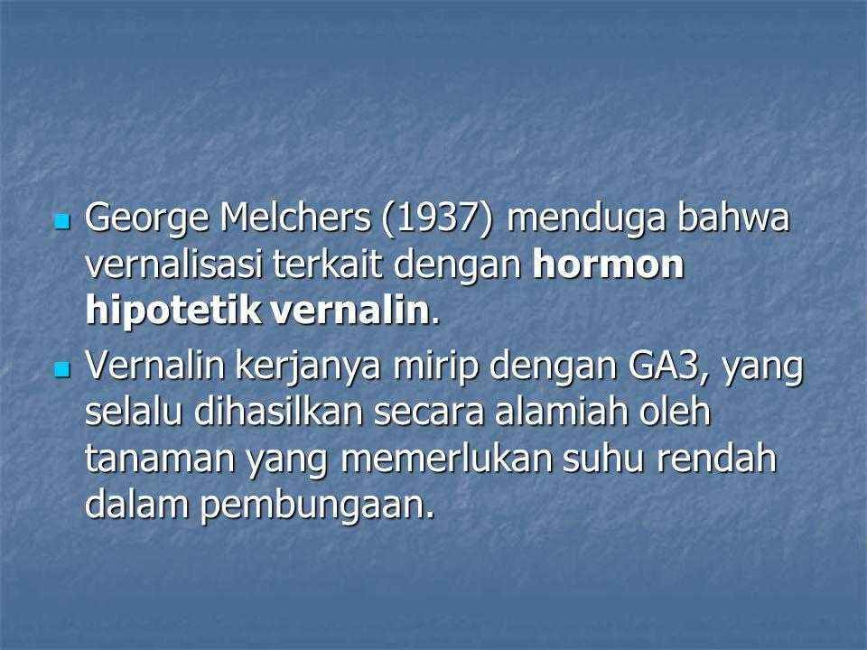 George Melchers (1937) menduga bahwa vernalisasi terkait dengan hormon hipotetik vernalin. George Melchers (1937) menduga bahwa vernalisasi terkait de