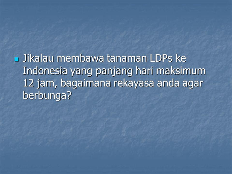 Jikalau membawa tanaman LDPs ke Indonesia yang panjang hari maksimum 12 jam, bagaimana rekayasa anda agar berbunga.
