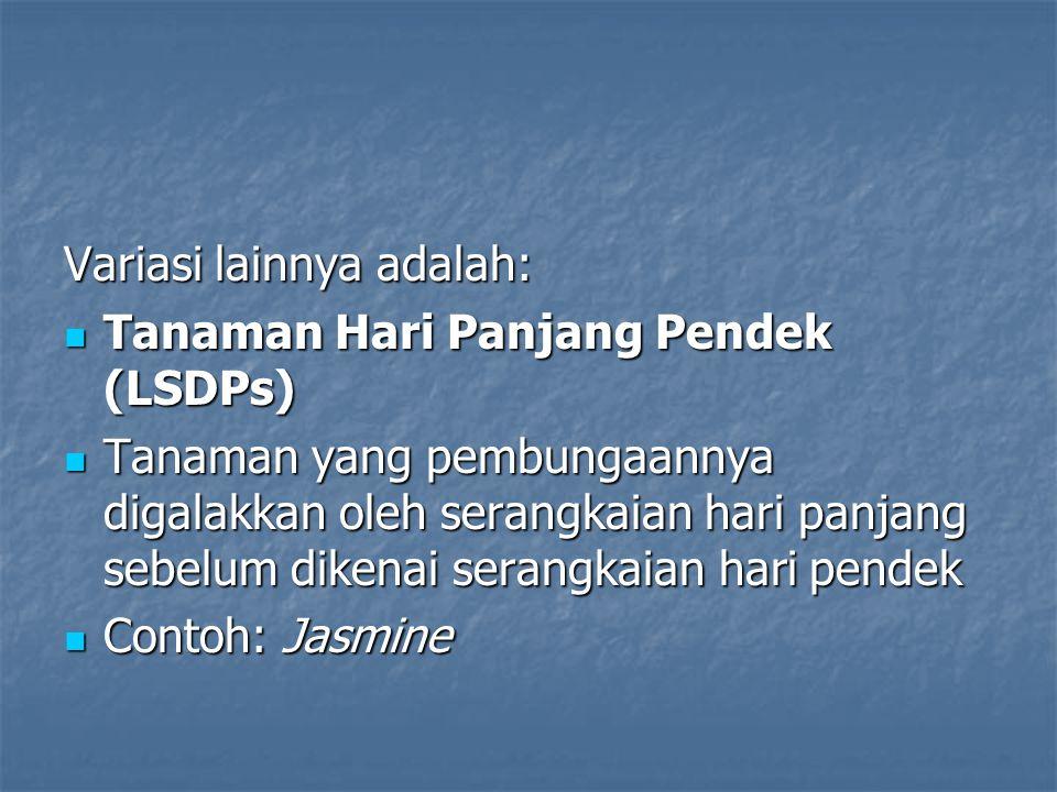Variasi lainnya adalah: Tanaman Hari Panjang Pendek (LSDPs) Tanaman Hari Panjang Pendek (LSDPs) Tanaman yang pembungaannya digalakkan oleh serangkaian