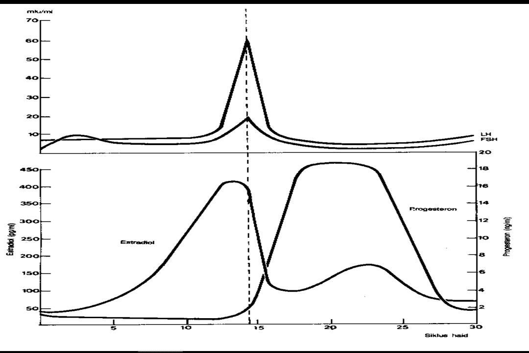 FSH & LH perifer << (bbrp hari sebelum haid), FSH sd 5-10 IU/ml ( 3-5 hari I siklus), kmd turun sampai rendah, sedang LH tak banyak berubah ( < 10 mIU