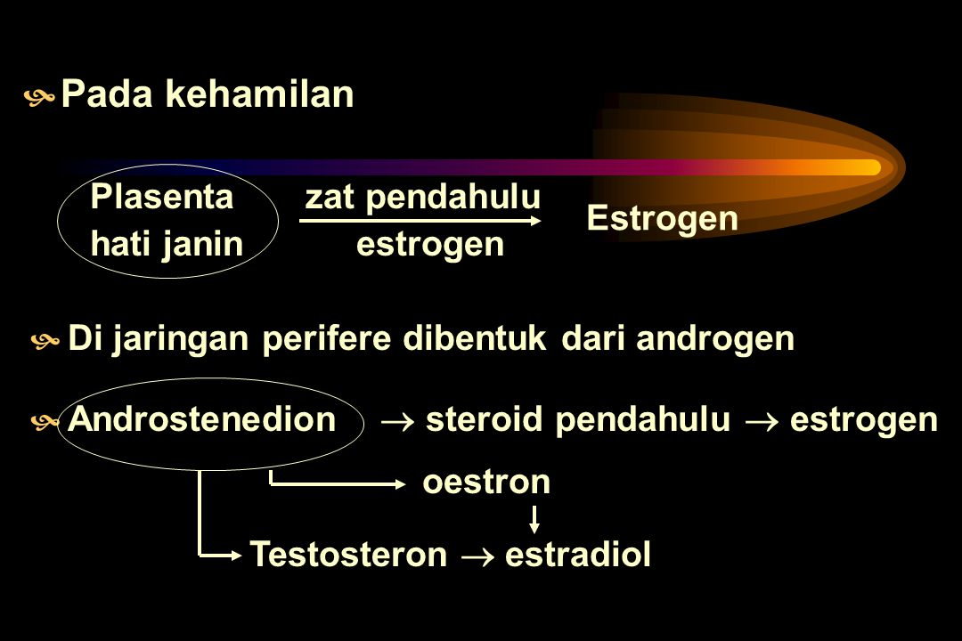 PRODUKSI & METABOLISME ESTROGEN HHasil utama : 17 estradiol DDalam tubuh : - estron - estriol DDibuat di ovarium, kelenjar adrenal, testis Efek