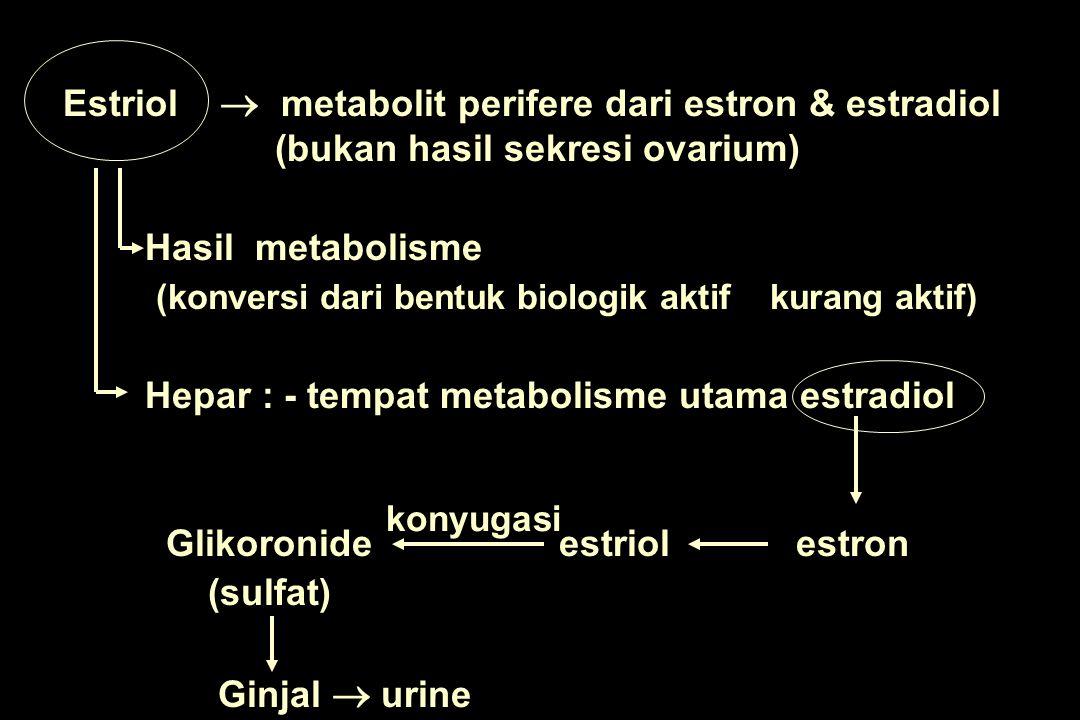 Pada kehamilan Plasenta zat pendahulu hati janin estrogen DDi jaringan perifere dibentuk dari androgen AAndrostenedion  steroid pendahulu  est