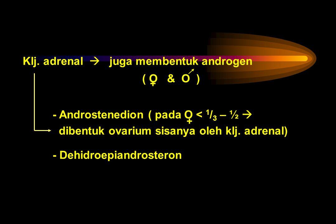 Estrogen androgen bila ada perbedaan sensitivitas alat-alat yang dipengaruhi - Hirsutisme ringan - Perbedaan pertumbuhan - Perbedaan kelakuan
