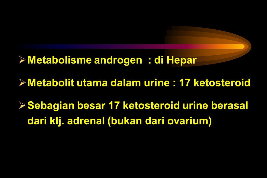 Klj. adrenal  juga membentuk androgen ( O & O ) - Androstenedion ( pada O < 1 / 3 – ½  dibentuk ovarium sisanya oleh klj. adrenal) - Dehidroepiandro