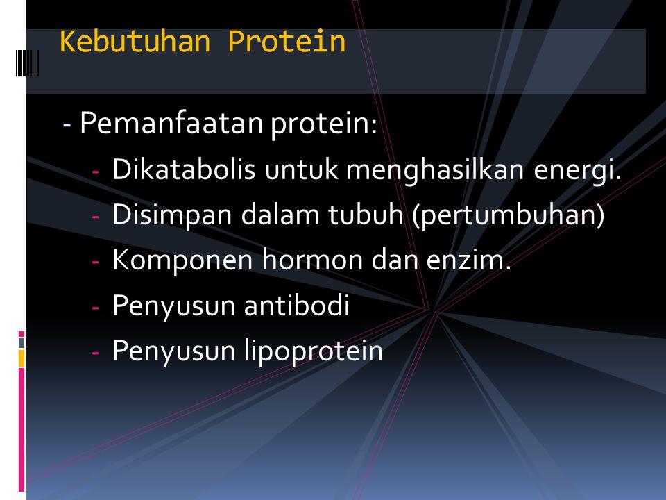 Kebutuhan Protein - Pemanfaatan protein: - Dikatabolis untuk menghasilkan energi. - Disimpan dalam tubuh (pertumbuhan) - Komponen hormon dan enzim. -